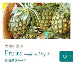 石垣産フルーツ